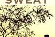 Dog Sweat – Recensione