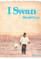 I Swan – Recensione