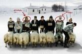 """""""Rams"""": il trailer ufficiale in italiano"""