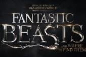 """""""Gli animali fantastici: dove trovarli"""", molti i riferimenti a """"Harry Potter e il Calice di Fuoco"""""""