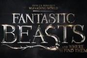 """""""Gli animali fantastici: dove trovarli"""", nuove immagini ufficiali del film"""