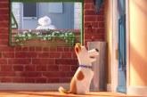 """Box Office USA: l'attesissimo """"Pets"""" subito in vetta"""