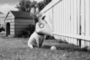 Frankenweenie: quando Tim Burton venne licenziato dalla Disney