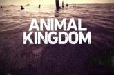 Animal Kingdon 2×02: il karma perseguita la famiglia Cody – Spoiler