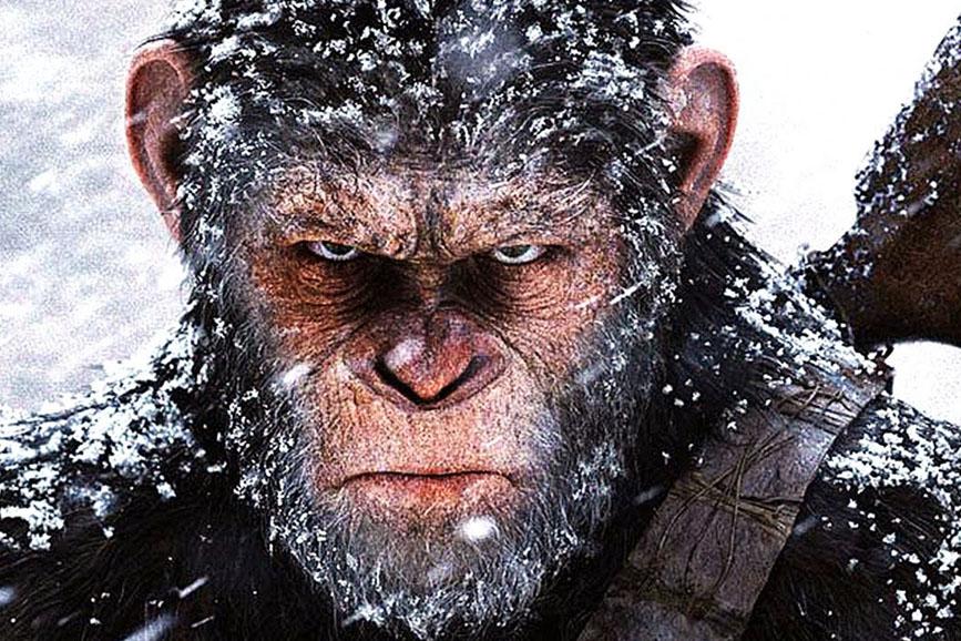 20th Century Fox con l'istituto Jane Goodall a sostegno degli scimpanzé