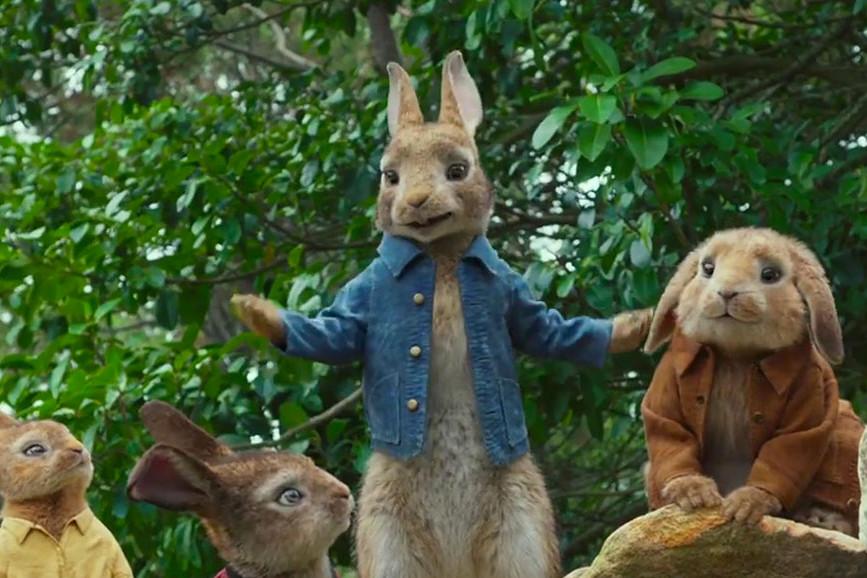 Peter Rabbit scena