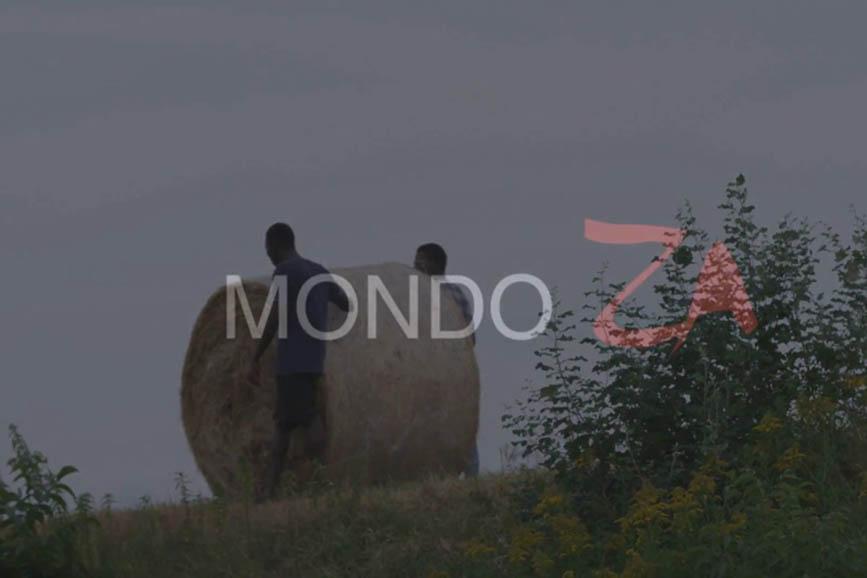 Mondo Za (2017)