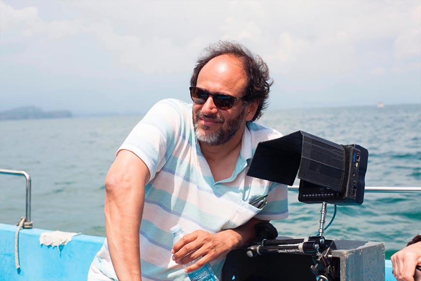 Luca Guadagnino regista