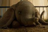 """Box Office Italia: continua il successo di """"Dumbo"""""""