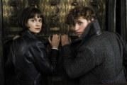 """Box Office Italia: """"Animali Fantastici 2"""" debutto da record"""