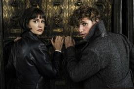 """""""Animali Fantastici: I crimini di Grindelwald"""" lo spettacolare trailer finale"""
