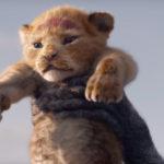 Il Re Leone: online il primo teaser trailer italiano del live action Disney