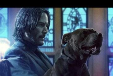 """Box Office Usa: """"John Wick – Parabellum"""" annienta la concorrenza"""