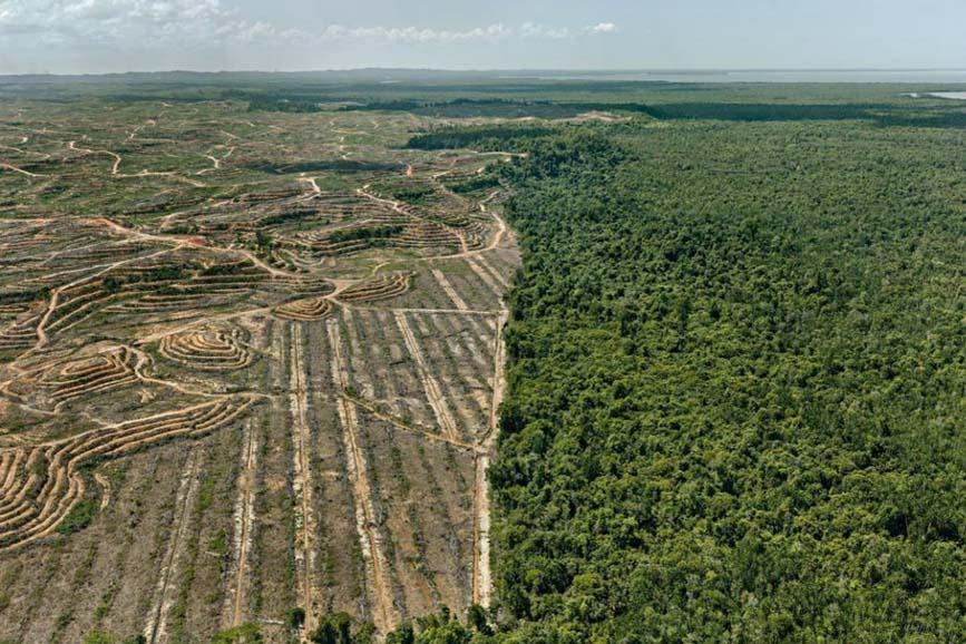 Anthropocene - L'epoca umana coverlg