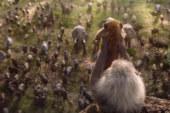 """Box office Italia: """"Il Re Leone"""" ancora in testa"""