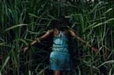 Nell'erba alta (2019)