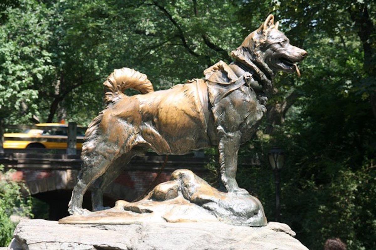 Balto e Togo – La leggenda statua
