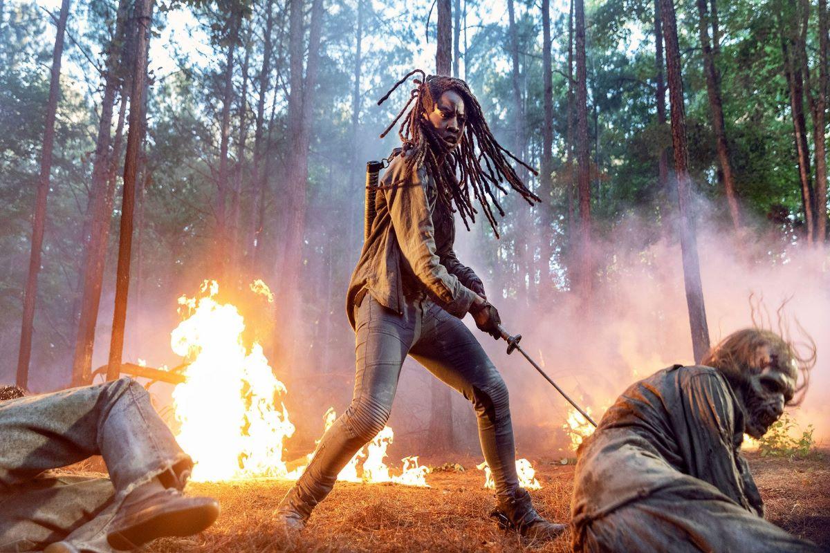 The Walking Dead 10_immagine