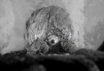 I mostri delle rocce atomiche (1958)