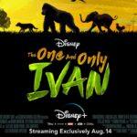 """Angelina Jolie produttrice del nuovo film Disney """"L'unico e insuperabile Ivan"""""""