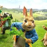 """""""Peter Rabbit 2: Un birbante in fuga"""", il trailer finale"""