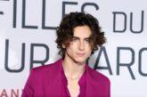 Timothée Chalamet interpreterà il giovane Willy Wonka nel film della Warner Bros.