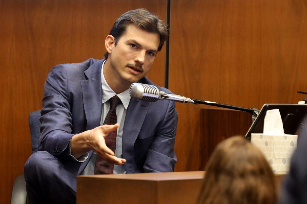Ashton Kutcher cast Your Place Or Mine
